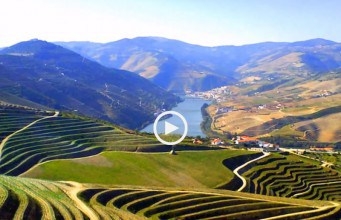 No esplendor do Douro
